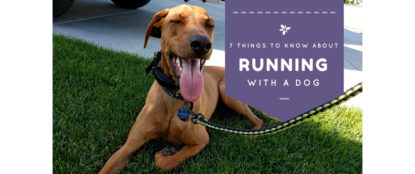 7 things to know about running with a dog